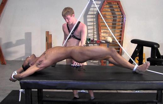 Naked gay bungee jump
